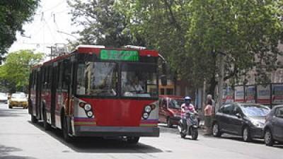 Córdoba planea incorporar troles rusos a la flota del transporte