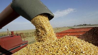 La AFIP estableció un régimen de registración de movimientos y existencias de granos