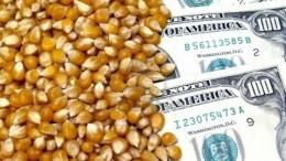 Exportadores liquidaron en la última semana 496,43 millones de dólares
