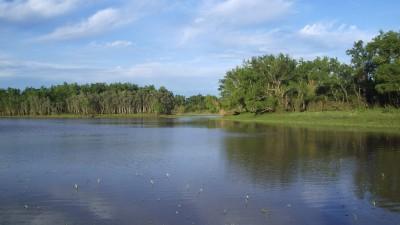 El 22 de marzo se conmemora el Día Mundial del Agua