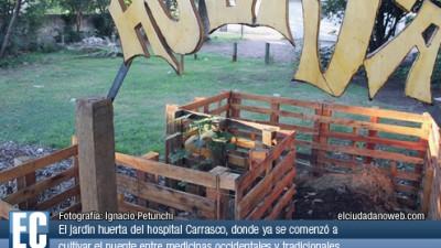 La Salud Pública municipal de Rosario cura con medicina alternativa