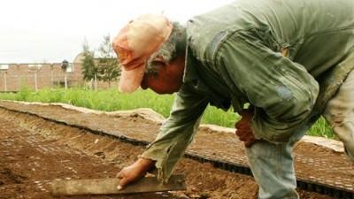 En Humberto Primo, entregan el Monotributo Social Agropecuario