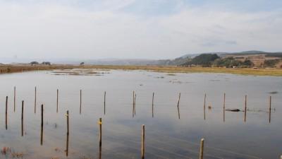 Familias aisladas desde hace más de un mes en campos de Ucacha