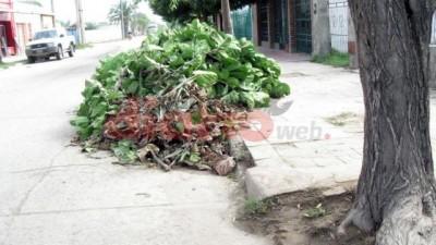 Añatuya: Sancionarán a quienes arrojen basura en la vía pública