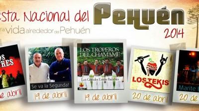 Fiesta Nacional del Pehuén. 17 al 20 de Abril en Aluminé