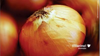 Fiesta Provincial de la Cebolla. 11,12 y 13 de Abril en Hilario Ascasubi