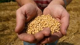 La Pampa: el Fondo de la Soja subió un 65,4% en el primer trimestre