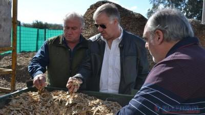 Corrientes: Exitosa experiencia para generar energía en la provincia con desechos de la madera