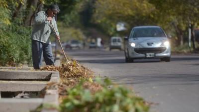 Mendoza: Comunas levantan entre 9 mil y 64 mil kilos de hojas al día