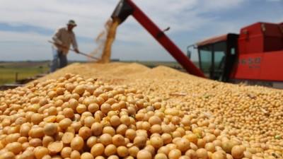 La cosecha de soja fijará un récord