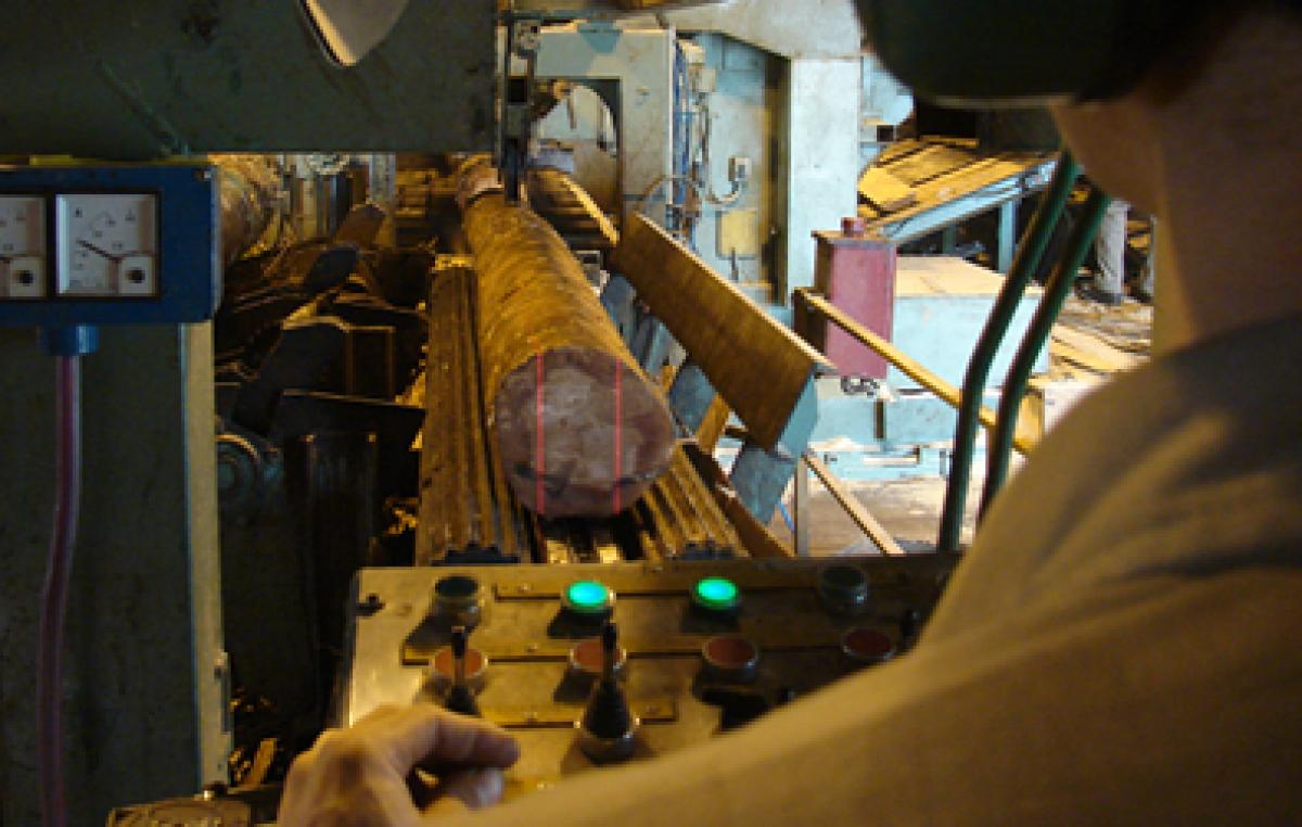 Una industria de Virasoro producirá su propia energía