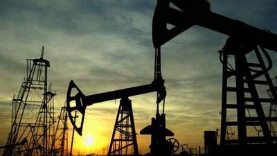 Neuquén: Intendentes petroleros del MPN respaldaron a Sapag