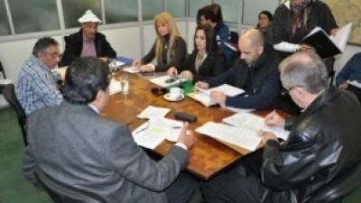Chaco: La Comisión de Asuntos Municipales aprobó la modificación de la Ley Orgánica Municipal