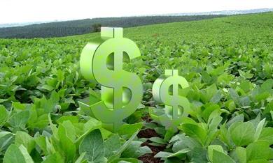 El Municipio de San Luis intimó al Gobierno provincial para que libere los fondos de la soja