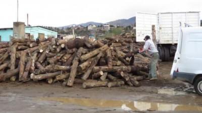 Bariloche: Llegan aportes de Nación para programa Plan Calor 2014