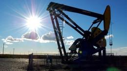 Petronas invertirá US$ 550 millones para desarrollo en Vaca Muerta