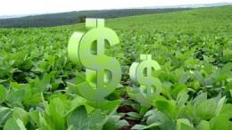 El Gobierno de Catamarca suspendió envíos del Fondo Sojero aSanta Rosa
