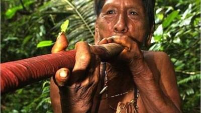 En peligro de extinción 200 pueblos indígenas