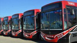Córdoba: La inversión puesta a rodar en coches de transporte urbano