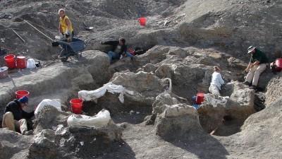 Determinan que en la Patagonia vivió el dinosaurio más grande