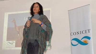 La ONU distingue a una investigadora argentina por su trabajo con vicuñas
