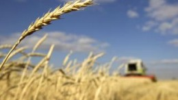 Scioli busca una suba del Inmobiliario Rural para 2015