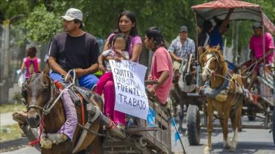 Acusaron al municipio de Salta de no hacer «nada» por los carreros