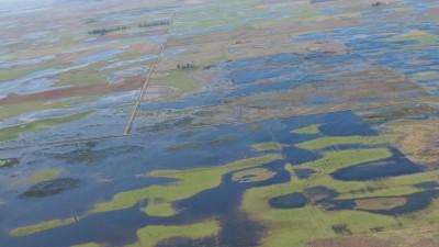 El clima afectó un millón de hectáreas del centro del país