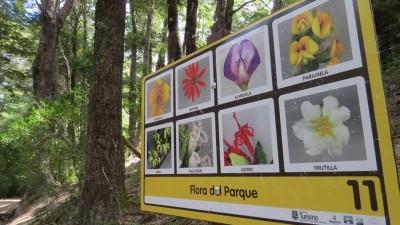 La Municipalidad de Bariloche realiza trabajos para mejorar el Parque Llao Llao
