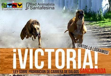 ley_contra_carrera_galgos
