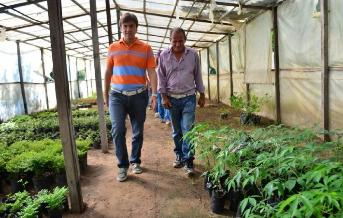 El vivero municipal de resistencia cuenta con m s de 20 for Viveros en capital