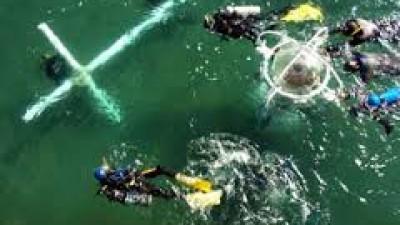 Vía Crucis Submarino, 3 de abril en Puerto Madryn