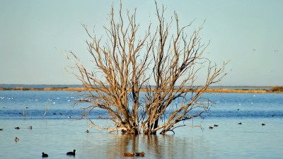 Proponen consulta popular en Rawson por la Laguna Negra