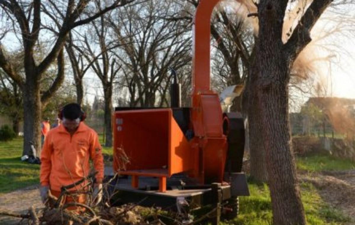 Paraná: Implementaron un nuevo sistema para la recolección domiciliaria de ramas y residuos verdes