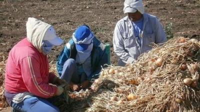 El trabajo esclavo representa la mitad de las víctimas de trata de personas