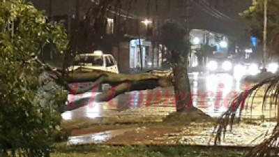 Fuerte tormenta produjo grandes daños materiales enFormosa