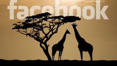 Facebook abrió su primera oficina en África para impulsar su presencia en el continente