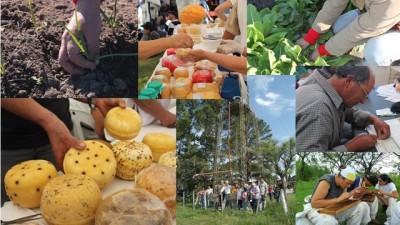 """El Gobierno Nacional crea sello """"producido por la agricultura familiar"""""""