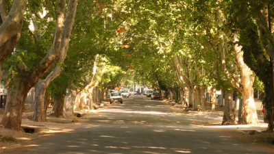 Sesenta distritos de Mendoza pueden pedir su autonomía municipal