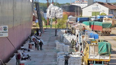 En un mes tres navíos embarcarán 90.000 toneladas de arroz argentino desde Entre Ríos