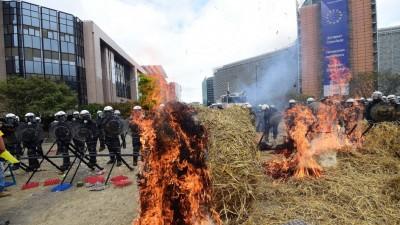 Miles de agricultores europeos protestan por la crisis del sector