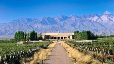 """Anunciaron que se creará la """"Ruta del Vino"""" en Chubut"""