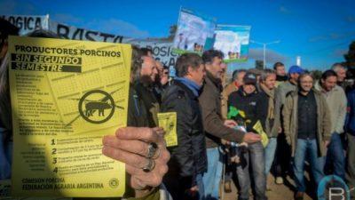 A los productores de cerdos ya no les alcanza ni para comprar maíz