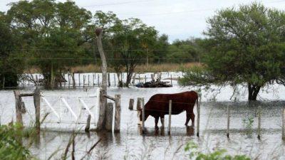 La emergencia hídrica, otro round de la pelea entre Santa Fey Nación