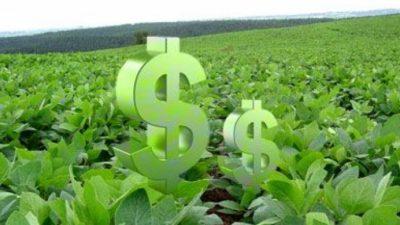 Preocupación: caen los ingresos por el fondo sojero