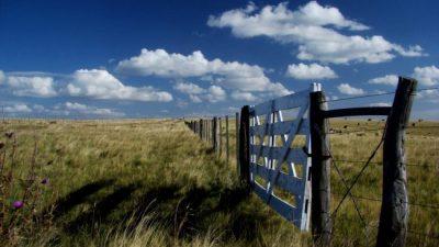 Santa Fe: Piden derogar el decreto que reemplazó la ley de tierras rurales