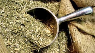 Misiones: Crecen las importaciones de yerba mate proveniente de Brasil