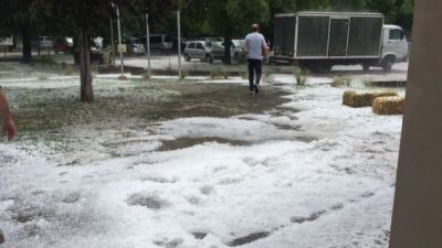 """Mendoza: El granizo desató otra """"tormenta"""" en el Valle de Uco"""