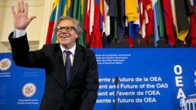 Milagro Sala: la OEA pidió su «inmediata» liberación