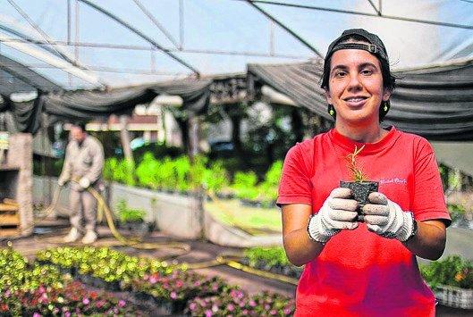 Rosario viveros que hacen plantines e incluyen a personas for Viveros en rosario